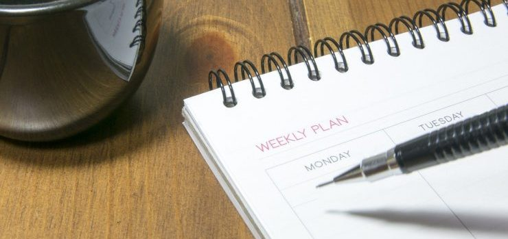 Weekly plan of movers Pinellas County.