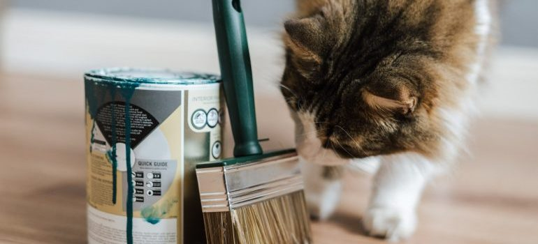 can sniffing a can of paint