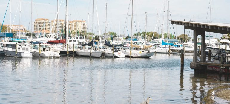 a picture of a yacht dock in St. Petersburg as one of the places in Florida for European expats