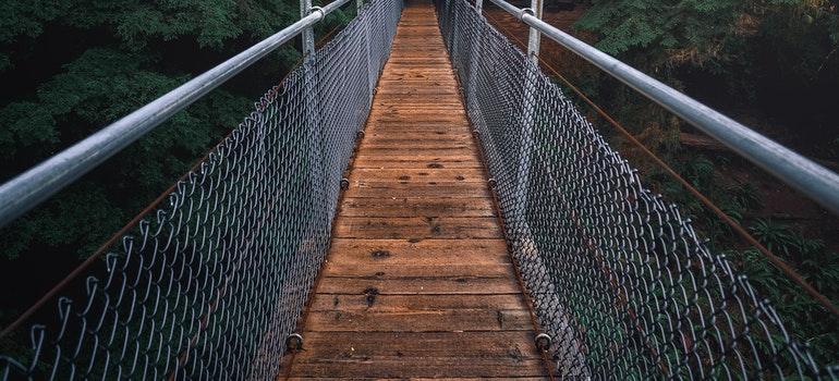 A narrow wooden bridge in a jungle