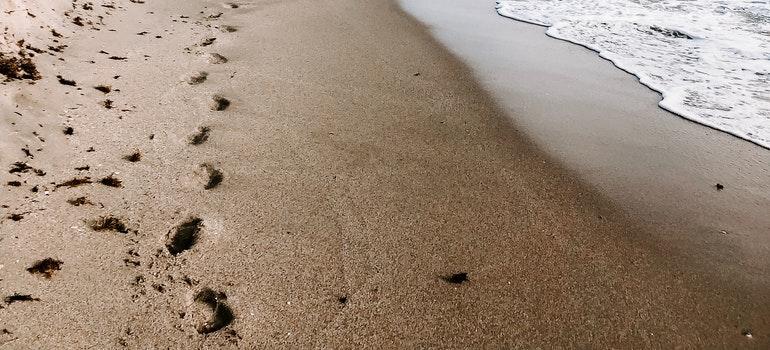 A long Florida beach